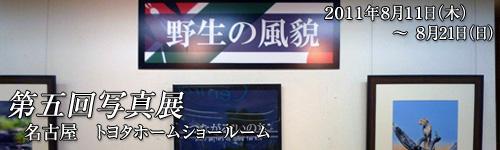 pg5-banner